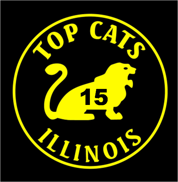TC_15_year_Gold_Logo